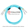 Custom FC to FC 12 Fibers 10G OM4 50/125 Multimode Armored Breakout Cable 3.0mm Legs