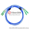 Custom SC to FC 12 Fibers Singlemode 9/125 Armored Breakout Cable 3.0mm Legs