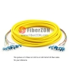 12 Fibers LC to SC 9/125 Single Mode MultiFiber PreTerminated Breakout Trunk Cable