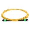 1M MTP Female to MTP Female 12 Fibers OS2 9/125 Singlemode Trunk Cable, Polarity B, Elite, LSZH Bunch