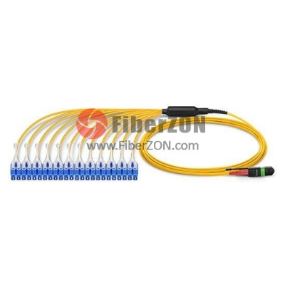 24 Fibers MTP24 to 12 LC UPC Duplex Breakout Singlemode 9/125 HD BIF Fiber Optic Cable,LSZH Bunch