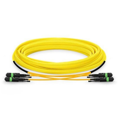 Custom 24 Fibers 2xMTP12 Trunk Singlemode OS2 9/245 HD BIF Fiber Optic Cable, LSZH Bunch, 10/40/100GBASE Interconnect Solution